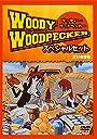 ウッディー ウッドペッカー30話スペシャルセット 字幕付 DVD