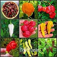 100ピース/ロット16種類の唐辛子ペッパーの唐辛子を選ぶ野菜の盆栽、ハッピーファーム、#1NS0SZ:Mixed