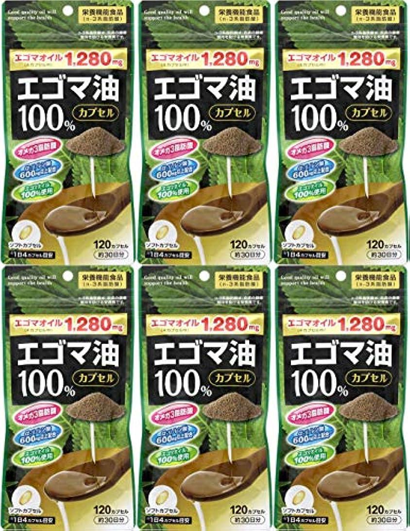 憂鬱な蚊ワイド【6個セット】エゴマ油100%カプセル 120カプセル