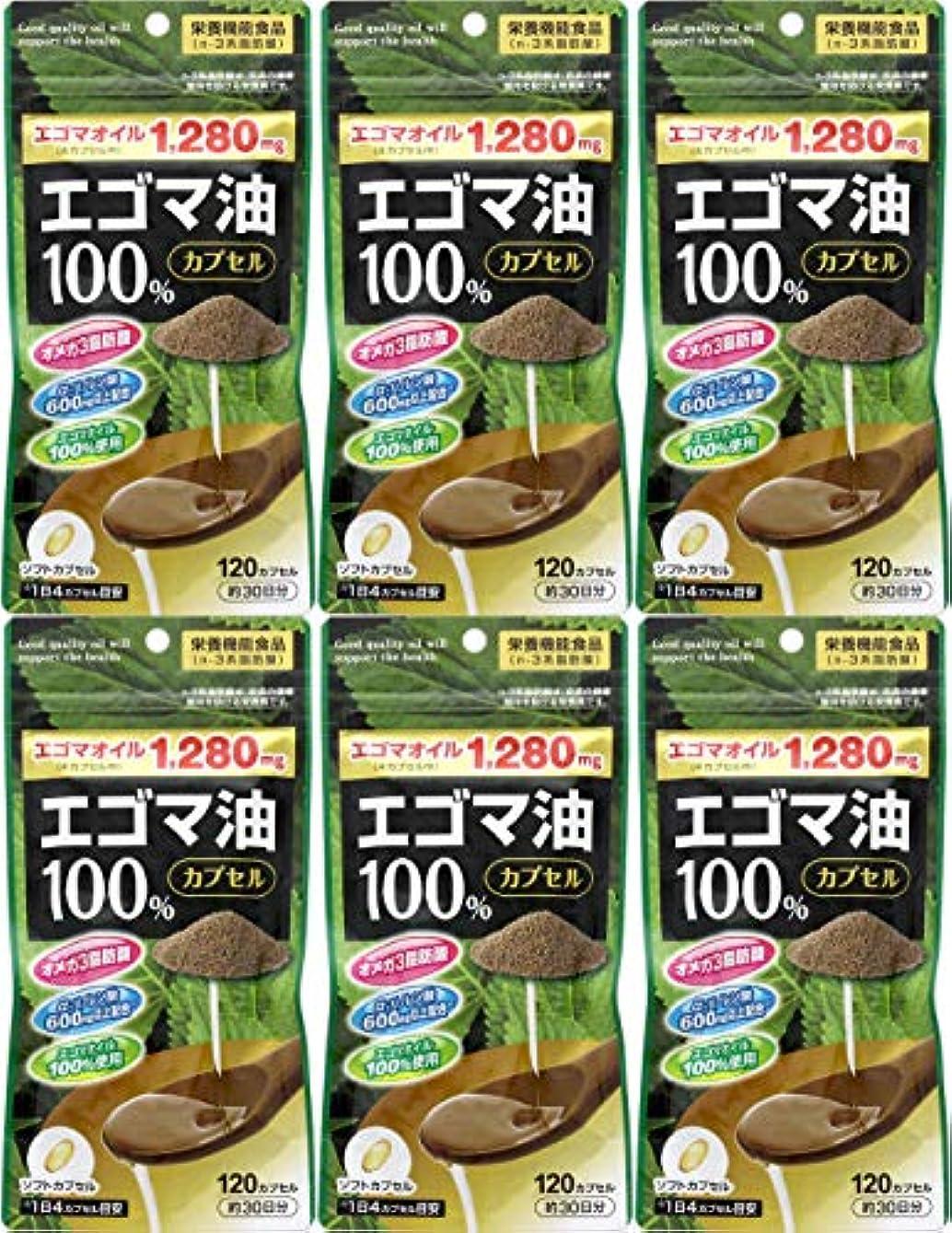 松明経歴覚醒【6個セット】エゴマ油100%カプセル 120カプセル