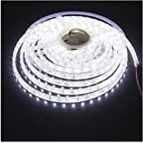 KINGLUX Led Strip Waterproof Led Light Strip Super Bright DC12V 25W SMD3528 300LEDs IP68 Led Underwater Lights Cool White 600
