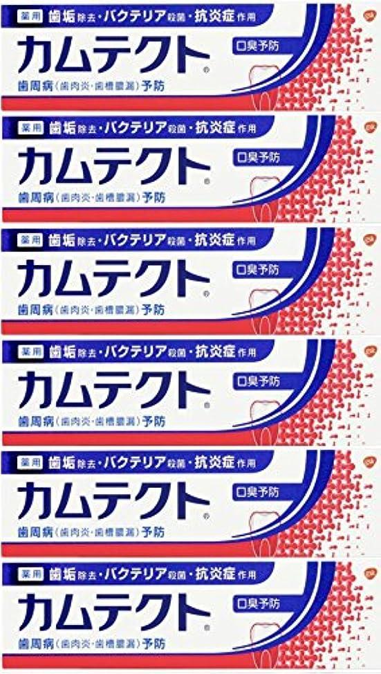 ストッキング翻訳する違反する【まとめ買い】カムテクト 口臭予防 歯周病(歯肉炎?歯槽膿漏) 予防 歯みがき粉 105g×6個