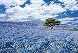 300ピース ジグソーパズル めざせ! パズルの達人 世界の絶景[日本編]  ネモフィラの咲く丘-茨城(26x38cm)