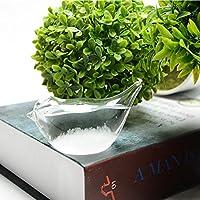 Jicorzo - 小さなクリスタル天気予報ボトルガラスびんストームホームオフィスの装飾のギフト[フラット鳥]