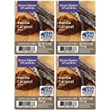 Better Homes and Gardens Vanilla Caramel Spice Wax Cubes - 4-Pack