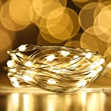 [12-PACK] LED String Lights LED Moon Lights 20 Led Micro Lights On Silver Copper Wire ( Batteries Include) For DIY Wedding Ce