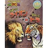 百獣の王ライオン対密林の王トラ―動物ガチンコ対決 (どっちがチャンピオン?動物ガチンコ対決)