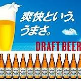 オリオンビール 500ml中瓶 12本セット(ケース無し)