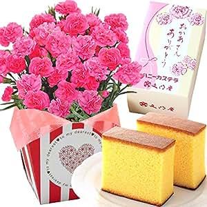 母の日ギフト カーネーション 文明堂カステラセット 花とスイーツ 5号鉢 (ピンク)