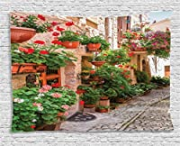 (150cm W By 100cm L, Multi 6) - Ambesonne Tuscan Decor Collection, Street View of a Small Renaissance Town with Floral Porches and Rock Houses Mediterranean Art, Bedroom Living Room Dorm Wall Hanging Tapestry, 150cm X 100cm , Multi