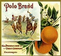 RiversideポロオレンジCitrus Fruitクレートボックスラベルアートプリント