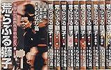 荒らぶる獅子 全10巻完結 (バンブー・コミックス) [マーケットプレイス コミックセット]
