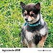 犬カレンダー 2018