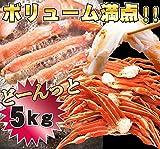 ズワイガニ 訳あり 5kg メガ盛 ボイル ずわい蟹 足