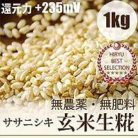 自然栽培玄米麹 1kg 味噌造り、甘酒作りには無農薬・無肥料の生麹 放射性物質検査済・ORP+235mV