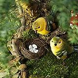 【期間限定】森の小鳥 Punson 4羽セット インテリア 本棚置物 かわいい 動物 森の小鳥 雑貨 1羽ずつ表情が違う 玄関小物 ガーデニング 英国風