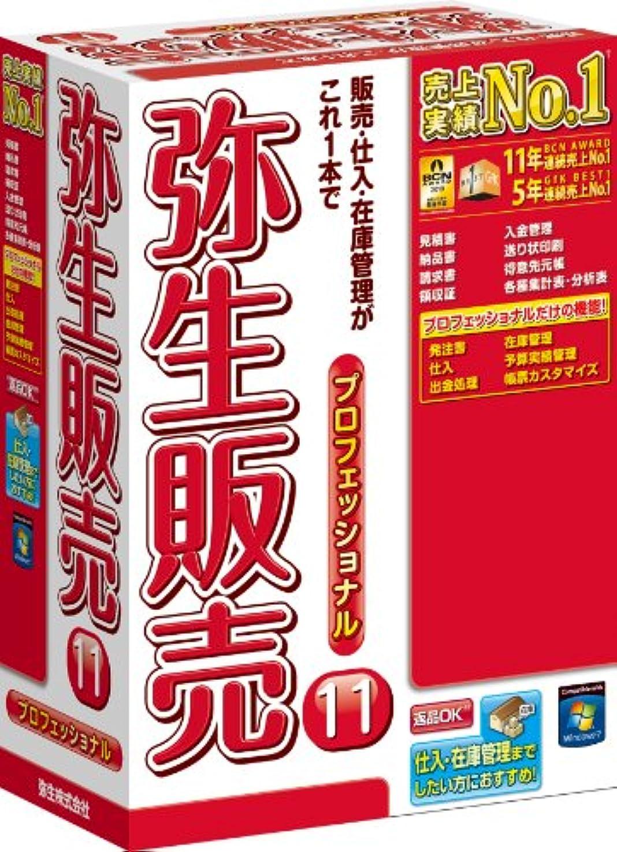 ネックレット鉄道プログラム【旧商品】弥生販売 11 プロフェッショナル