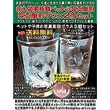 ペット(犬・猫)写真彫刻グラス2個セット、送料無料(沖縄と離島を除く)、クリスマス、母の日、父の日、敬老の日ギフト、誕生日、特価販売、名入れ無料、ペット、お皿、自分用、ギフト