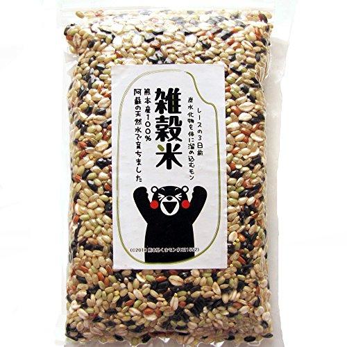 黒米 赤米 緑米 発芽玄米 ひえ きび あわ 押麦 熊本産 残留農薬ゼロ チャック付き 国産 1,000g