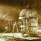 Birdcage(初回限定盤)(DVD付)