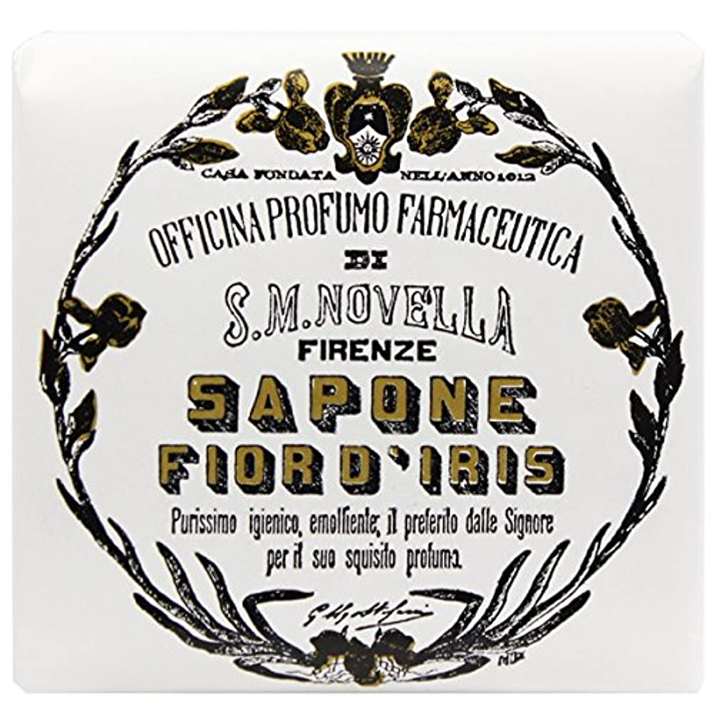 強打水没満了【サンタマリアノヴェッラ】 フィオールディリス ソープ 100g (5591) Fior d'Iris [並行輸入品]