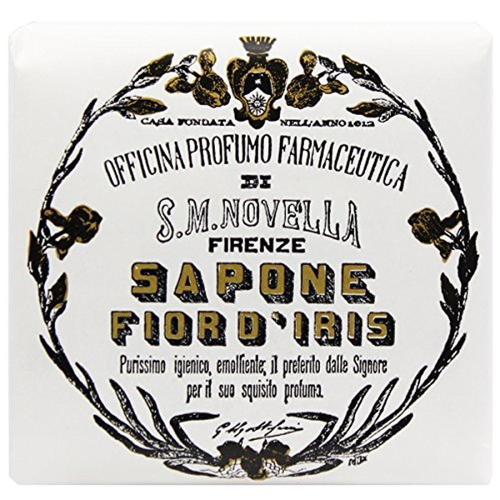 在庫ダイバーハング【サンタマリアノヴェッラ】 フィオールディリス ソープ 100g (5591) Fior d'Iris [並行輸入品]