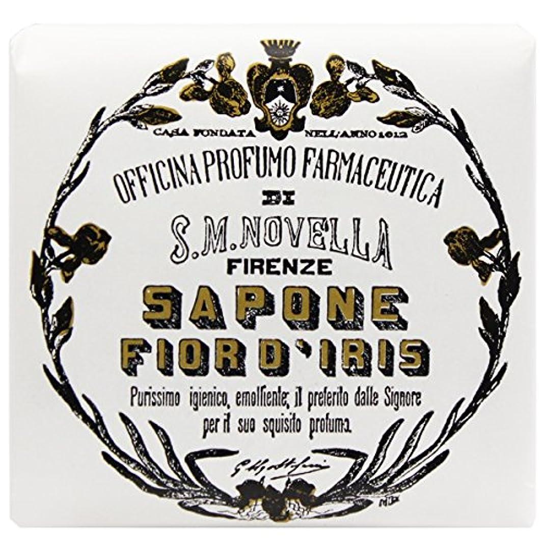 モール到着する急性【サンタマリアノヴェッラ】 フィオールディリス ソープ 100g (5591) Fior d'Iris [並行輸入品]