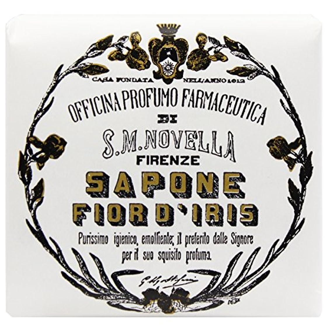 したがってばかげている市区町村【サンタマリアノヴェッラ】 フィオールディリス ソープ 100g (5591) Fior d'Iris [並行輸入品]