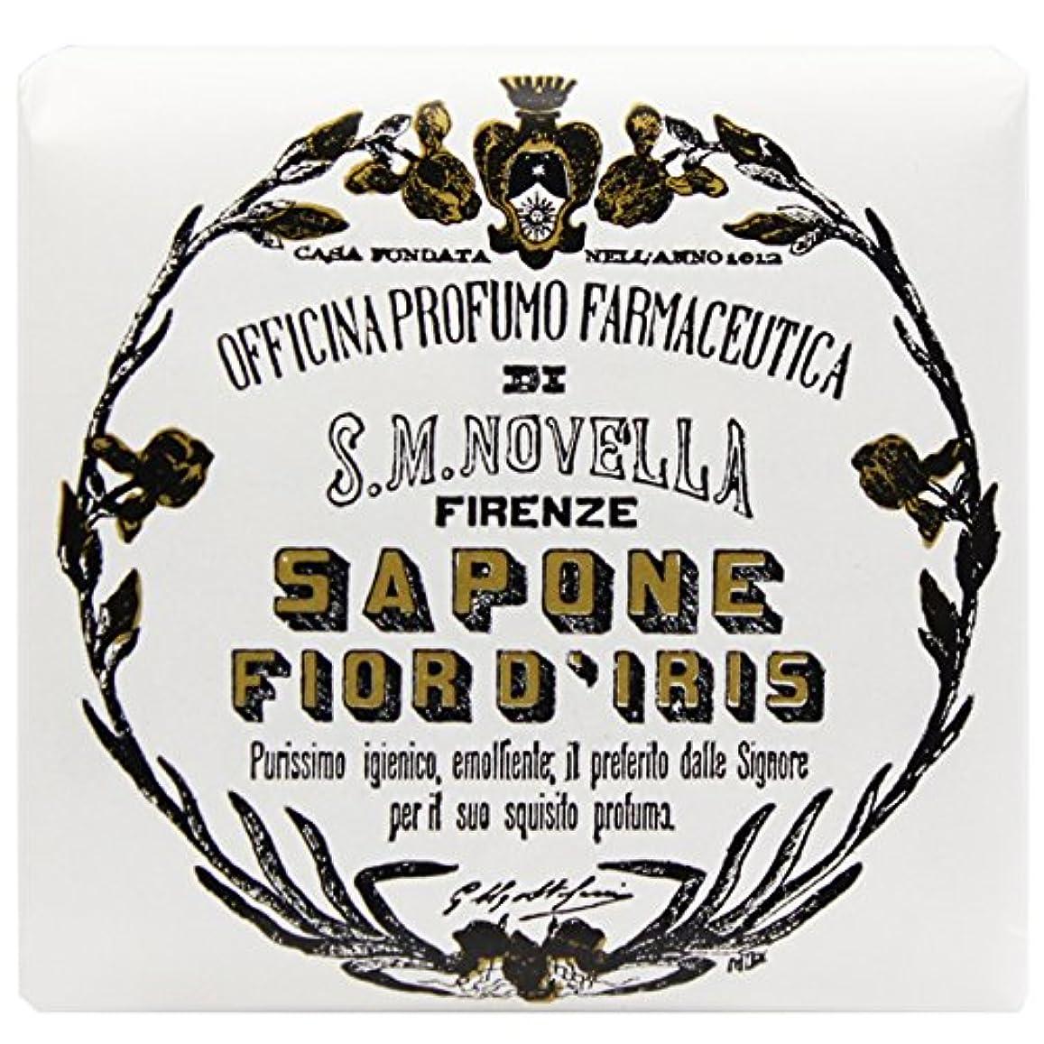 どういたしましてヘビー道徳教育【サンタマリアノヴェッラ】 フィオールディリス ソープ 100g (5591) Fior d'Iris [並行輸入品]