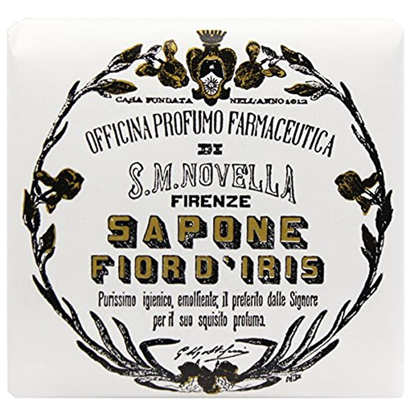 あなたのもの先行する崇拝する【サンタマリアノヴェッラ】 フィオールディリス ソープ 100g (5591) Fior d'Iris [並行輸入品]