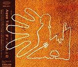 ダレカの地上絵 画像