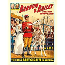 P。T。バーナムとベイリー–Baby giraffeヴィンテージポスター(アーティスト: ) USA C。1916 9 x 12 Art Print LANT-65756-9x12