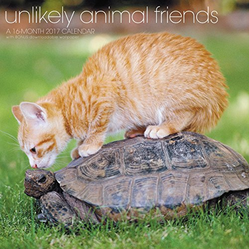 Unlikely Animal Friends 2017 Calendar: Includes Downloadable Wallpaper