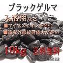 ブラックゲルマ 10kg 1kg×10袋 高級天然鉱石ブラックゲルマを入浴用などにお勧め