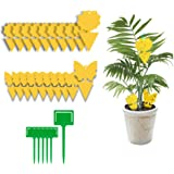 Yellow Dual-Sided Gnat Trap, Sticky Fly Trap, Disposable Insect Catcher Sticky Board for Mosquitoes, Houseplant, Garden (26 P