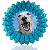 DLDER 犬おもちゃ 歯磨き 噛み付きトレーニング ゴム - (青)