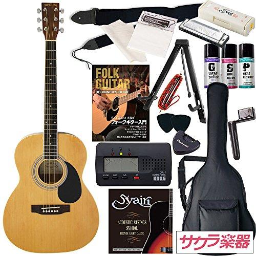 HONEY BEE アコースティックギター F-15 初心者入門16点セット...