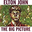 The Big Picture [12 inch Analog]