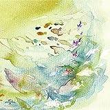 【Amazon.co.jp限定】ナッテ[初回限定盤(CD+特典DVD)](オリジナルクリアファイル&スペシャル音源CD付き)