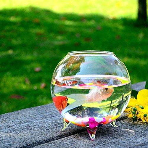 SHINA 創意的 デスクトップ式 透明 金魚鉢 植木鉢 ミニ水族館 ホームデコレーション