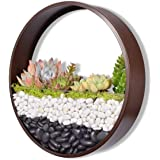 Round Metal Wall Planter 30cm Hanging Flower Vase Art Iron Hanging Basket Wall Mounted Succulent Container Air Plant Holder C