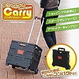 キャリーカート レジャー 重い荷物もラクラク 使いやすい 折りたたみ式コンテナキャリー