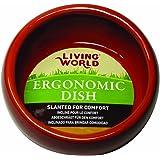 Living World Ceramic Ergonomic Pet Dish 120 ml Capacity, Terracotta Small