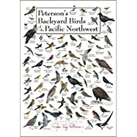 裏庭の野鳥Pacific NW Greeting Card