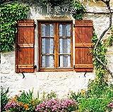 新 世界の窓