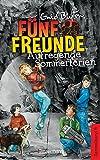 Fuenf Freunde - Aufregende Sommerferien - DB 08: Sammelband 08: Fuenf Freunde wittern ein Geheimnis/Fuenf Freunde auf dem Leuchtturm