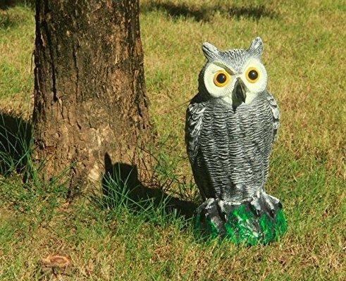 NH9 庭の装飾 フクロウ 驚異な目玉で威嚇!本物そっくりでどんな 鳥もびっくり!【防鳥防獣対策】撃退ハト スズメ カラス ムクドリ ヒヨドリなど 鳩よ 鳥よけ 鳩対策 鳥対策 撃退