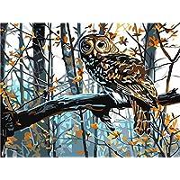 [ Wooden Framed ] DIY oilペイント、ペイントby Numberホーム装飾壁Pic値gift-owl 12 x 16インチ