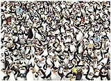 1000ピース ザ・ペンギンズ from マダガスカル ジグソーパズル (69cm×50cm) ...