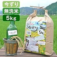【新米】【平成30年産】今ずり米 無洗米 減農薬 コシヒカリ 白米 (5kg)